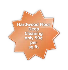 Hardwood floor deep cleaning only 59 cents per square foot